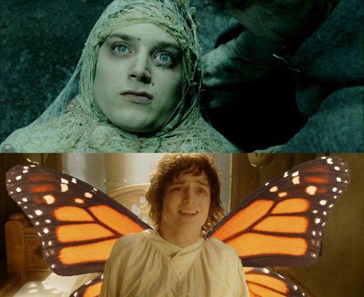 frodo_butterlfy