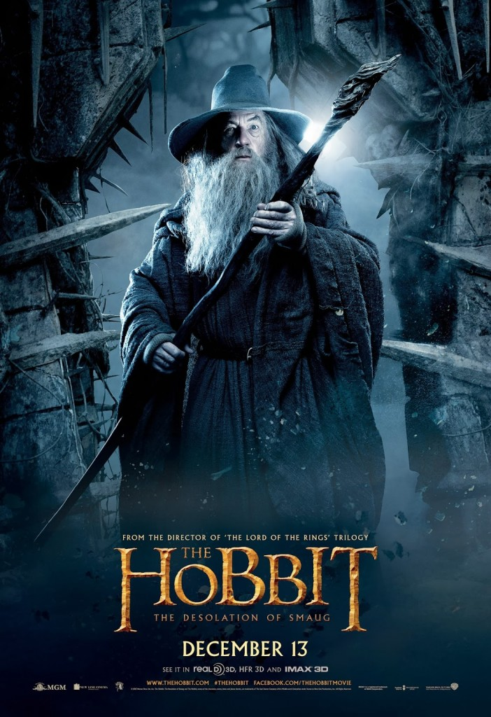 The-Hobbit-The-Desolation-of-Smaug-9d2247a6