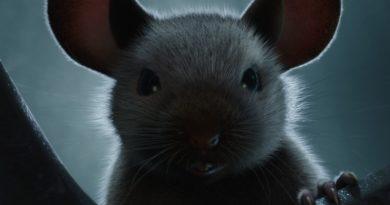 Le Seigneur des Anneaux, avec des souris