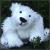 Illustration du profil de tizzfitz